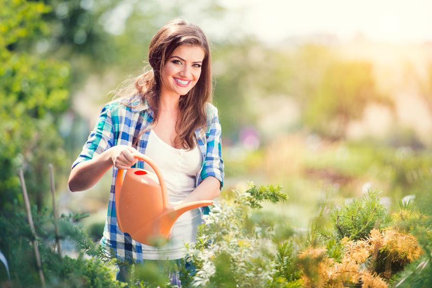 Egy kiváló kertész mibenléte.